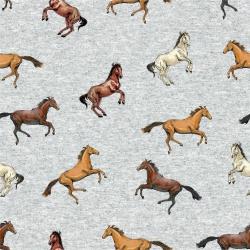 Dzianina pętelkowa konie - druk cyfrowy
